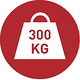 Lift 300 kg with mobile lifters